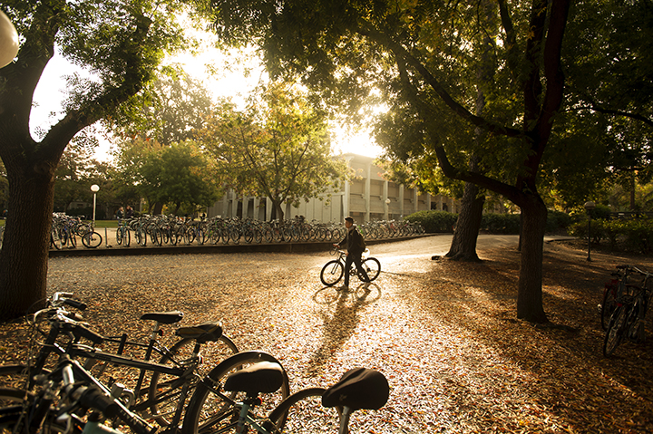 Fall scene on campus with a student and bicycle